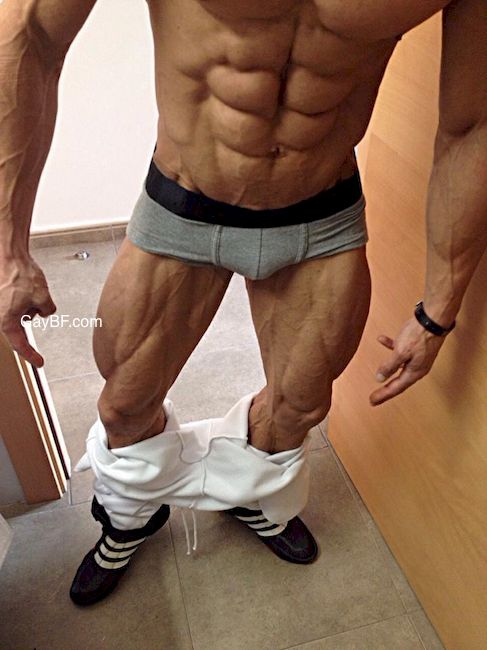 Amater Muscle Gay Porn